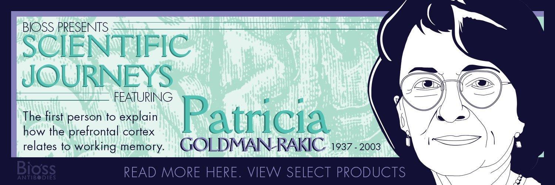 Patricia Goldman-Rakic: Pioneer of the Prefrontal Cortex